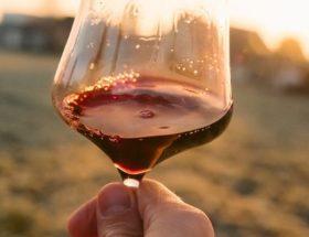 italiaanse wijnsoorten